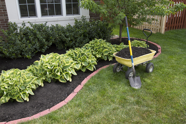 Mulching-and-Bed-Preparation