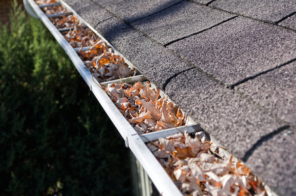 Rain-Gutter-Cleaning